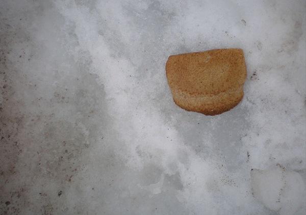 breadinsnow1[1]
